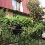 サイト更新しました 2012年春の出店風景写真追加。あと、夏の家の庭。